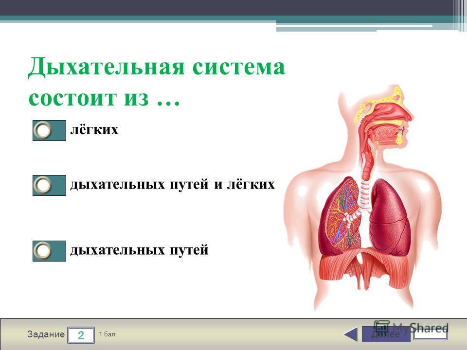 Далее 2 Задание 1 бал. Дыхательная система состоит из … лёгких дыхательных путей и лёгких дыхательных путей