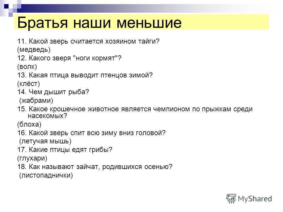 11. Какой зверь считается хозяином тайги? (медведь) 12. Какого зверя