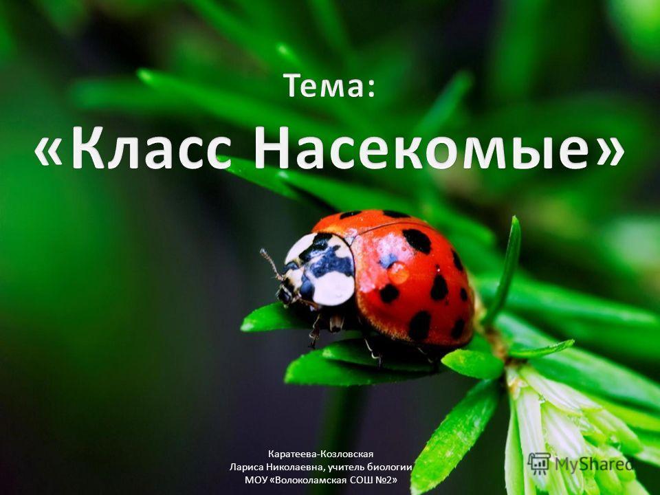 Каратеева-Козловская Лариса Николаевна, учитель биологии МОУ «Волоколамская СОШ 2»