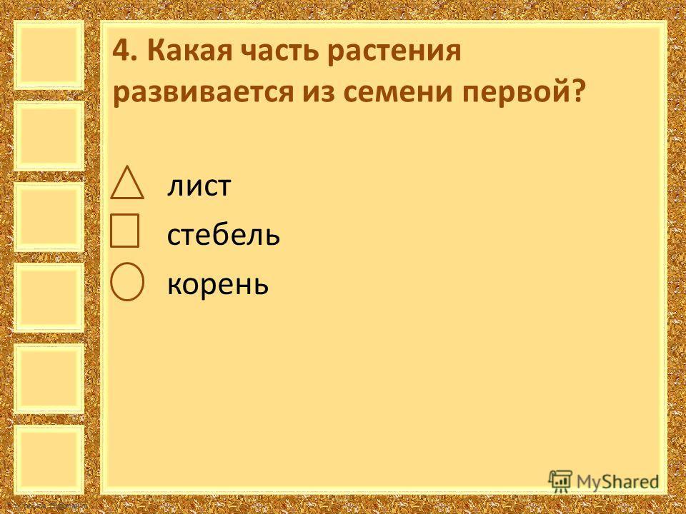 FokinaLida.75@mail.ru 4. Какая часть растения развивается из семени первой? лист стебель корень
