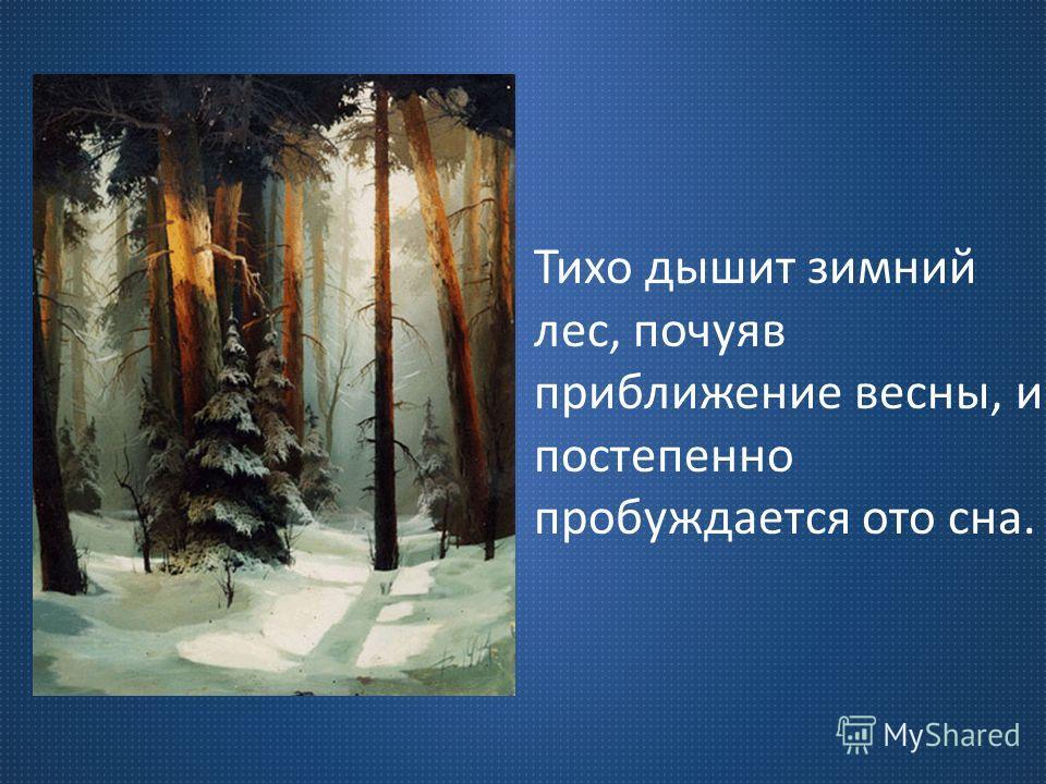 Тихо дышит зимний лес, почуяв приближение весны, и постепенно пробуждается ото сна.
