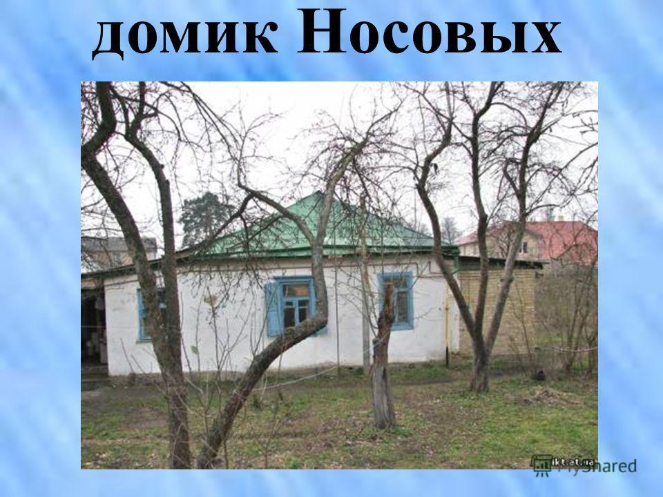 домик Носовых