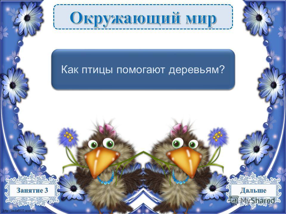 http://linda6035.ucoz.ru/ Спасают от вредителей – 1 б. Как птицы помогают деревьям?