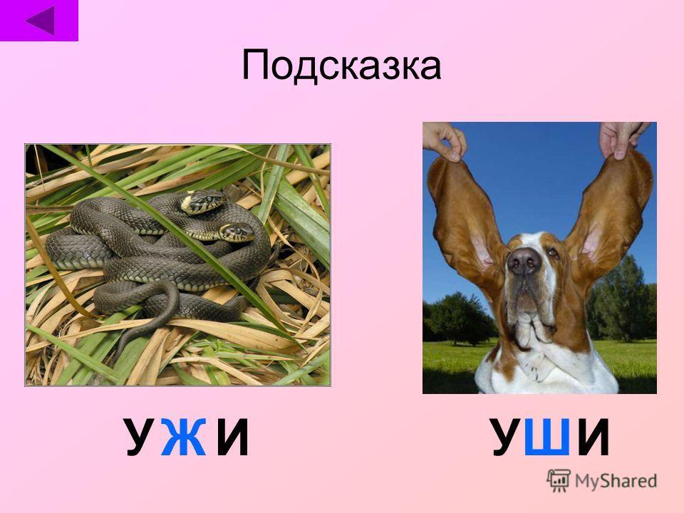 УШИЖУИ