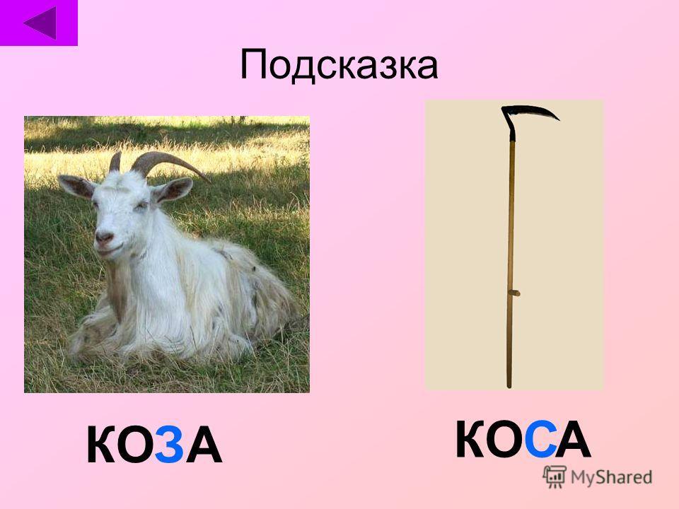 КОАС АЗ