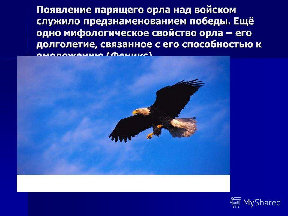 Появление парящего орла над войском служило предзнаменованием победы. Ещё одно мифологическое свойство орла – его долголетие, связанное с его способностью к омоложению (Феникс)