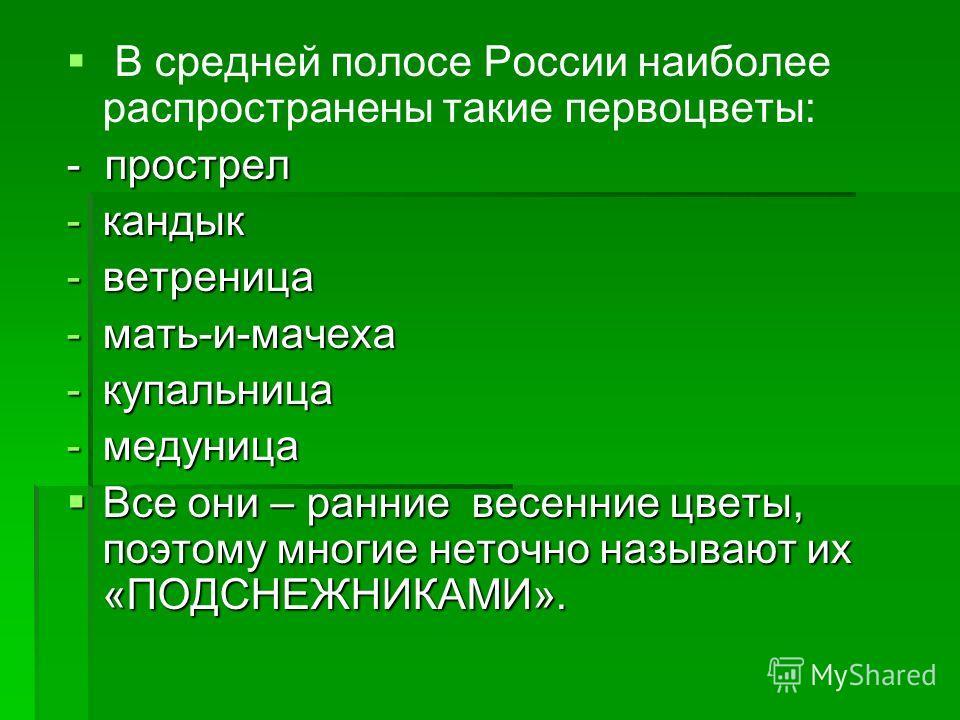 В средней полосе России наиболее распространены такие первоцветы: - прострел -кандык -ветреница -мать-и-мачеха -купальница -медуница Все они – ранние весенние цветы, поэтому многие неточно называют их «ПОДСНЕЖНИКАМИ». Все они – ранние весенние цветы,