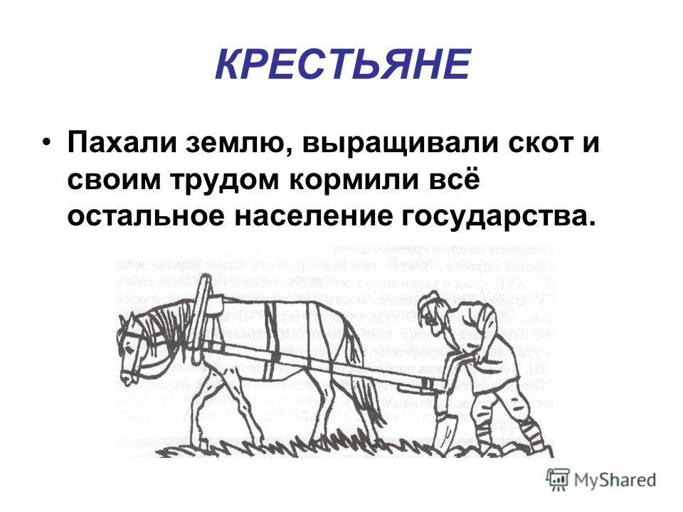 КРЕСТЬЯНЕ Пахали землю, выращивали скот и своим трудом кормили всё остальное население государства.