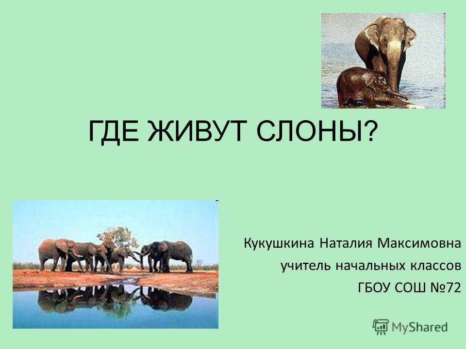 ГДЕ ЖИВУТ СЛОНЫ? Кукушкина Наталия Максимовна учитель начальных классов ГБОУ СОШ 72