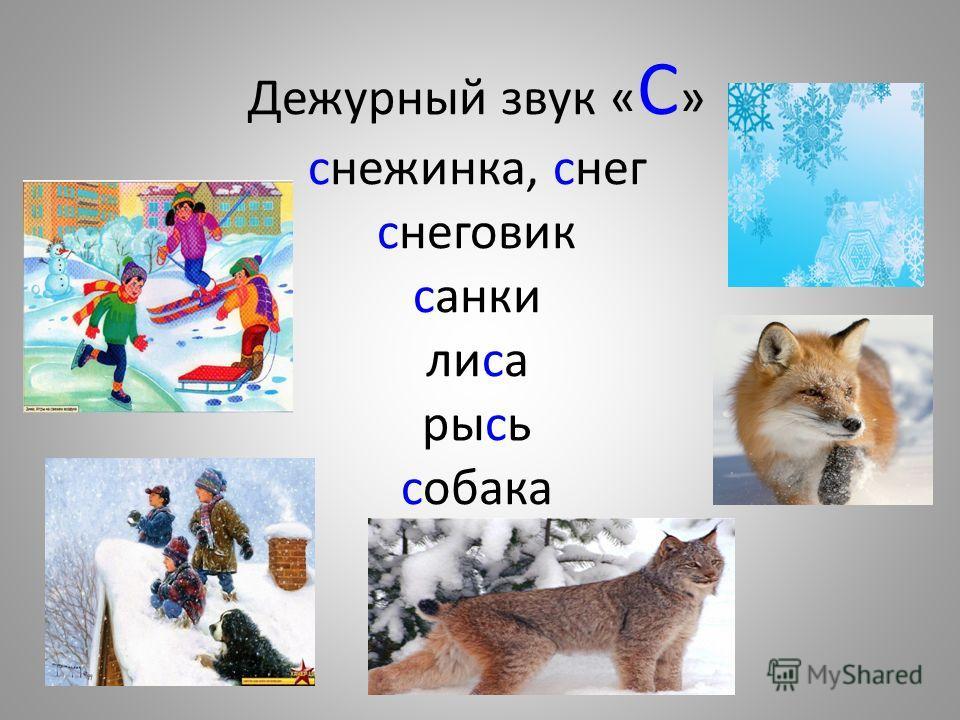 Дежурный звук « С » снежинка, снег снеговик санки лиса рысь собака