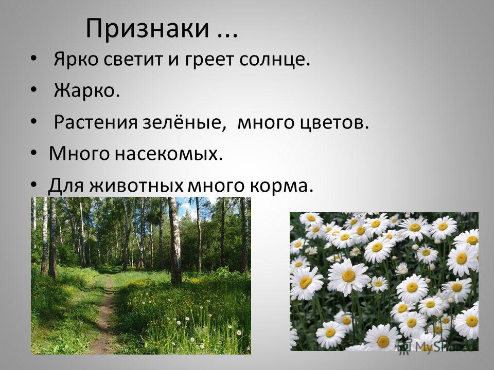 Признаки... Ярко светит и греет солнце. Жарко. Растения зелёные, много цветов. Много насекомых. Для животных много корма.