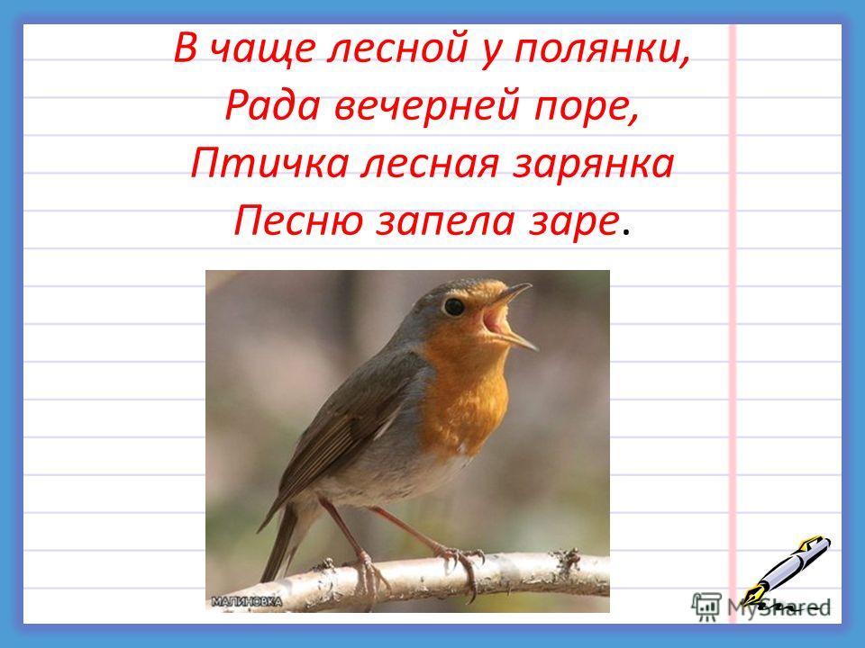 В чаще лесной у полянки, Рада вечерней поре, Птичка лесная зарянка Песню запела заре.