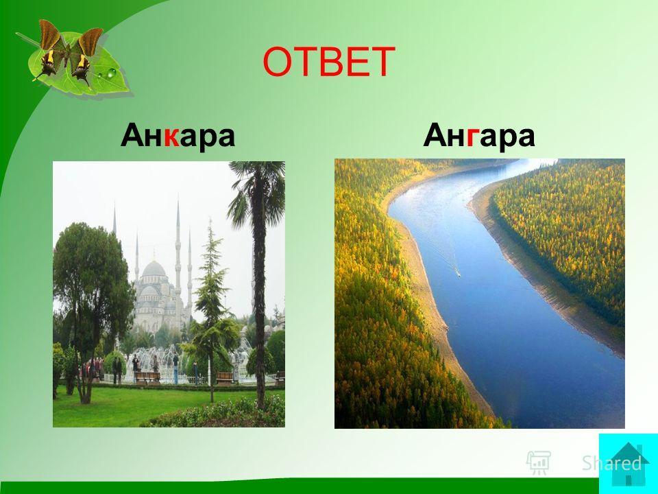 вопрос С «К» – коль к карте обратиться – Это Турции столица. С «Г» – Сибирская река, Полноводна, глубока. ответ