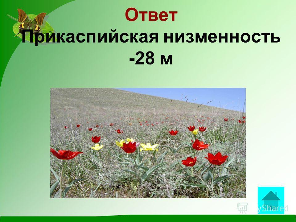 Вопрос Самая низкая отметка на территории России? ответ