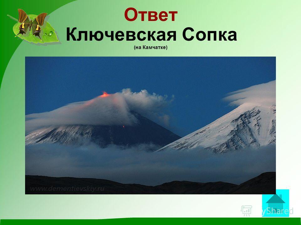 Вопрос Самый высокий вулкан на территории России ответ