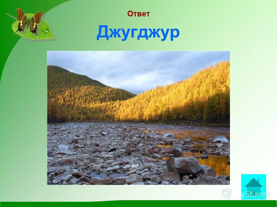 Вопрос Хребет на побережье Охотского моря, носящий очень необычное для России название ответ