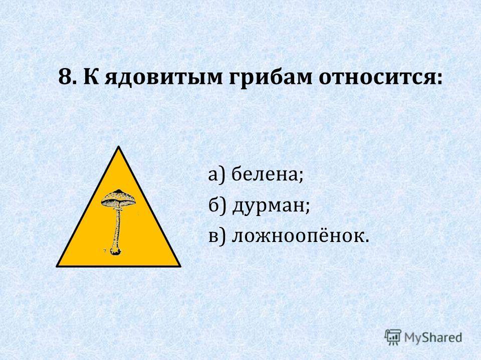 8. К ядовитым грибам относится: а) белена; б) дурман; в) ложноопёнок.