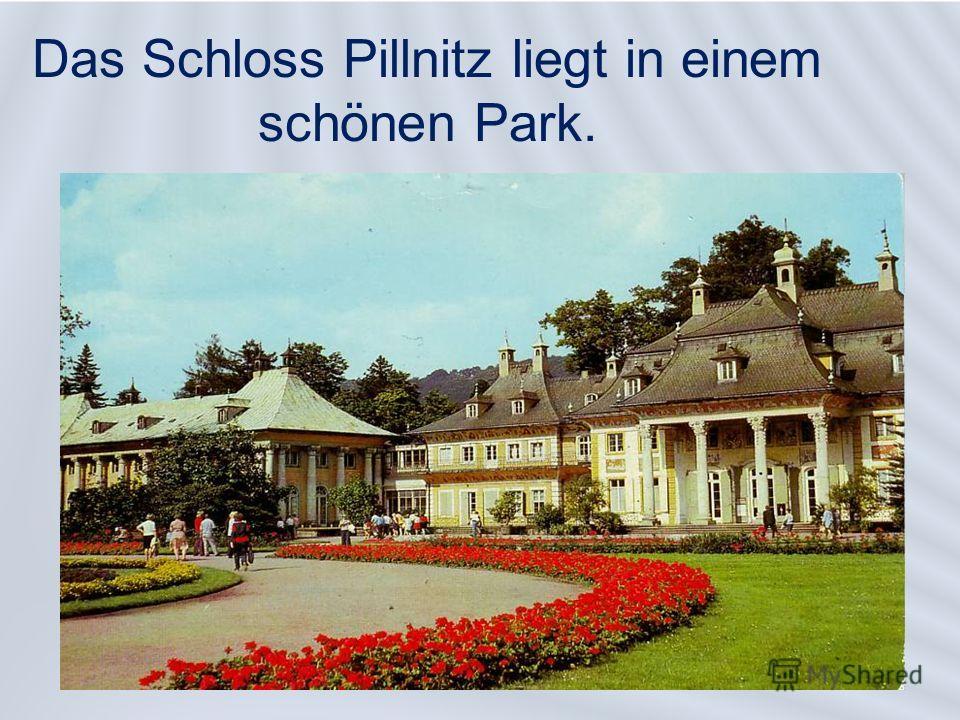 Das Schloss Pillnitz liegt in einem schönen Park.