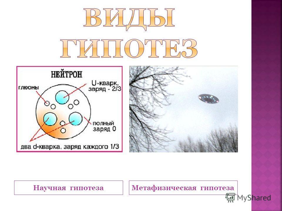 Научная гипотеза Метафизическая гипотеза
