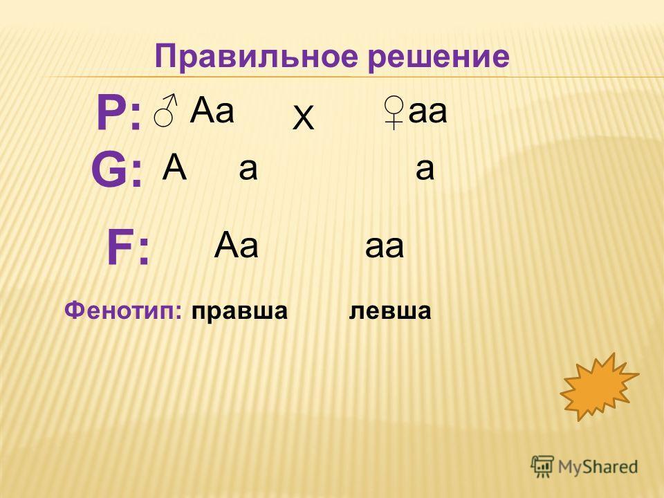 аа Аа Х а F:F: аа Р: G:G: Фенотип: правшалевша Правильное решение
