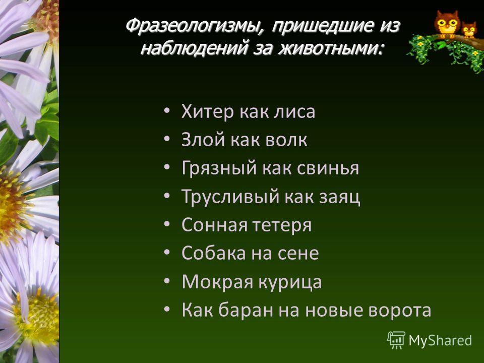 5 предложений по чувашскому языку про лису 4 класс