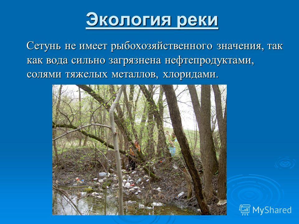 Экология реки Сетунь не имеет рыбохозяйственного значения, так как вода сильно загрязнена нефтепродуктами, солями тяжелых металлов, хлоридами. Сетунь не имеет рыбохозяйственного значения, так как вода сильно загрязнена нефтепродуктами, солями тяжелых