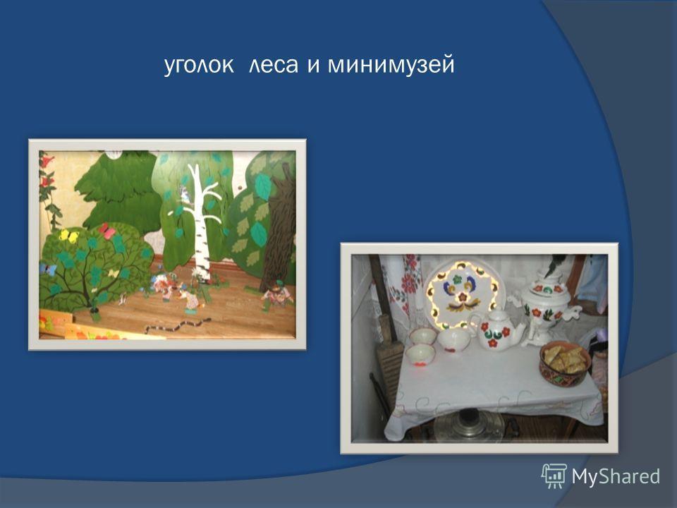 уголок леса и минимузей