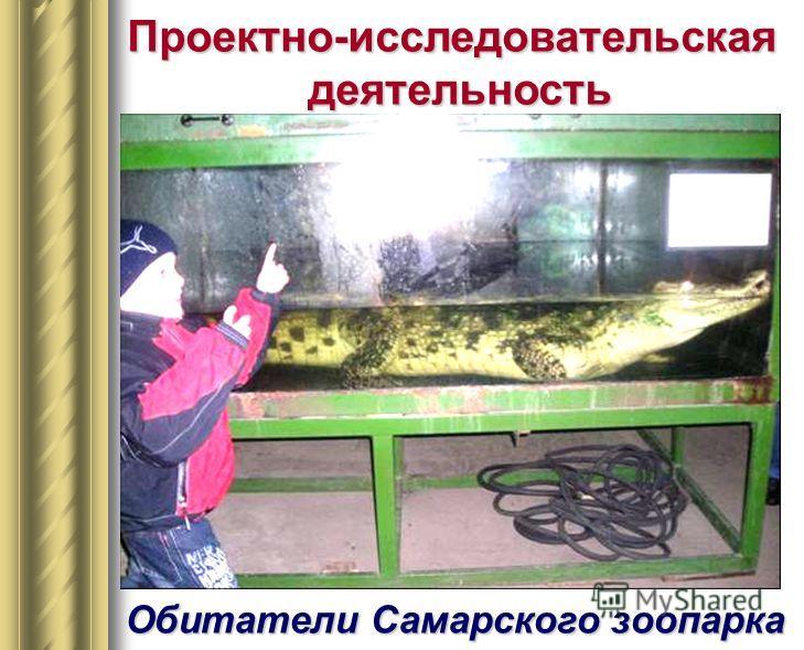 Проектно-исследовательскаядеятельность Обитатели Самарского зоопарка