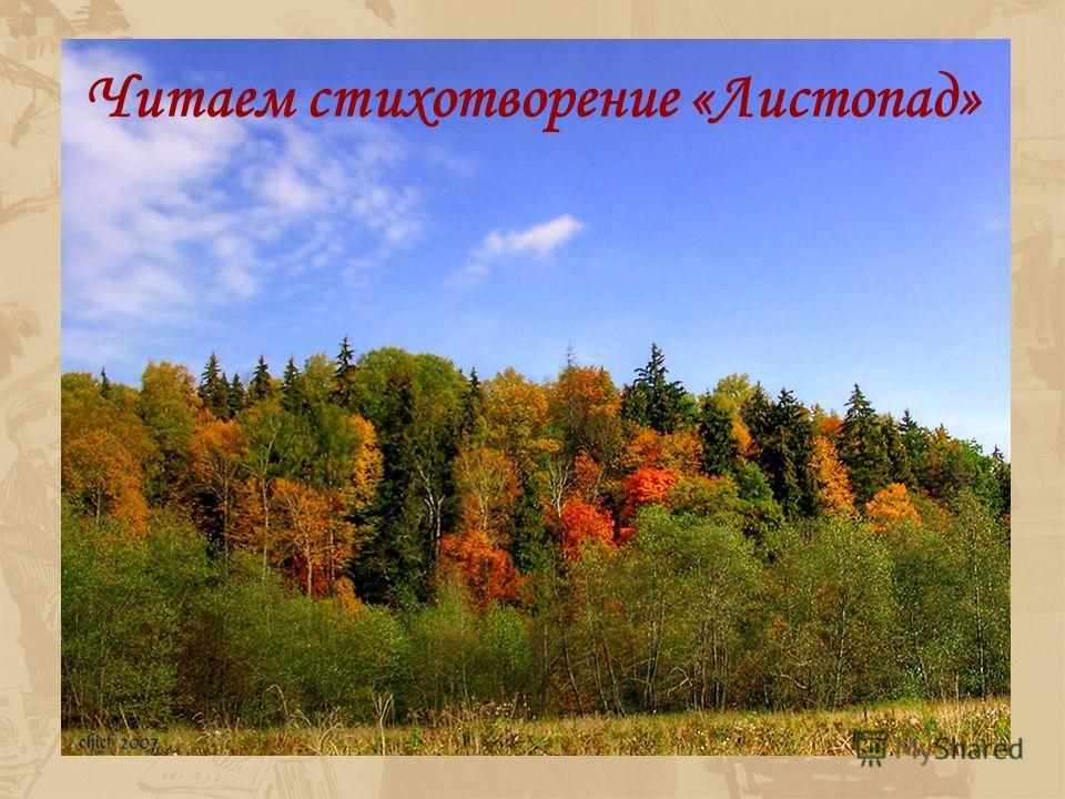 Нет, не пейзаж влечёт меня, Не краски жадный взор подметит, А то, что в этих красках светит Любовь и радость бытия И. Бунин Тема природы