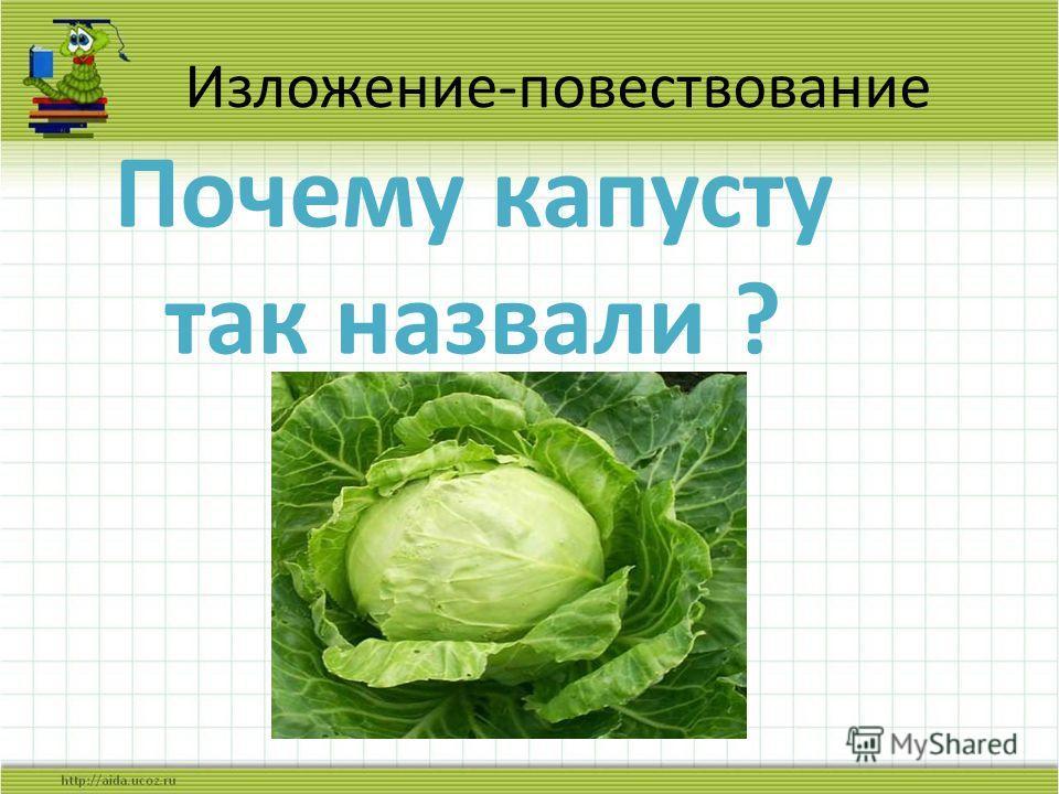 Изложение-повествование Почему капусту так назвали ?