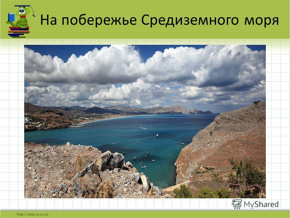 На побережье Средиземного моря
