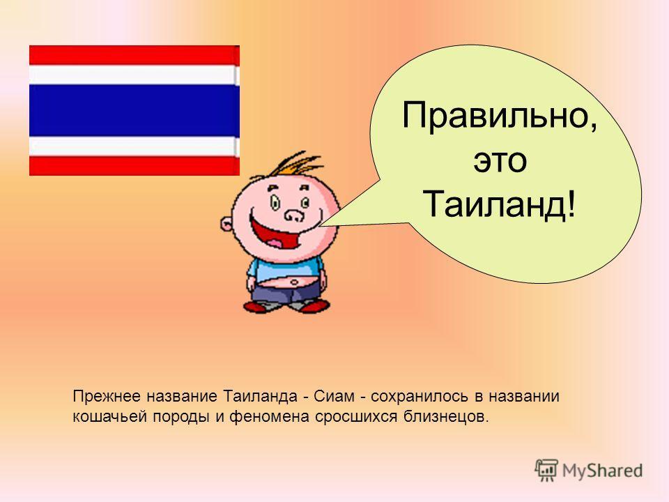Прежнее название Таиланда - Сиам - сохранилось в названии кошачьей породы и феномена сросшихся близнецов. Правильно, это Таиланд!
