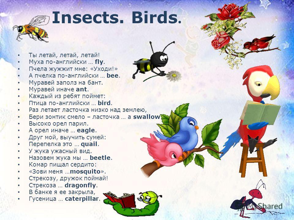 Insects. Birds. Ты летай, летай, летай! Муха по-английски … fly. Пчела жужжит мне: «Уходи!» А пчелка по-английски … bee. Муравей заполз на бант. Муравей иначе ant. Каждый из ребят поймет: Птица по-английски … bird. Раз летает ласточка низко над земле
