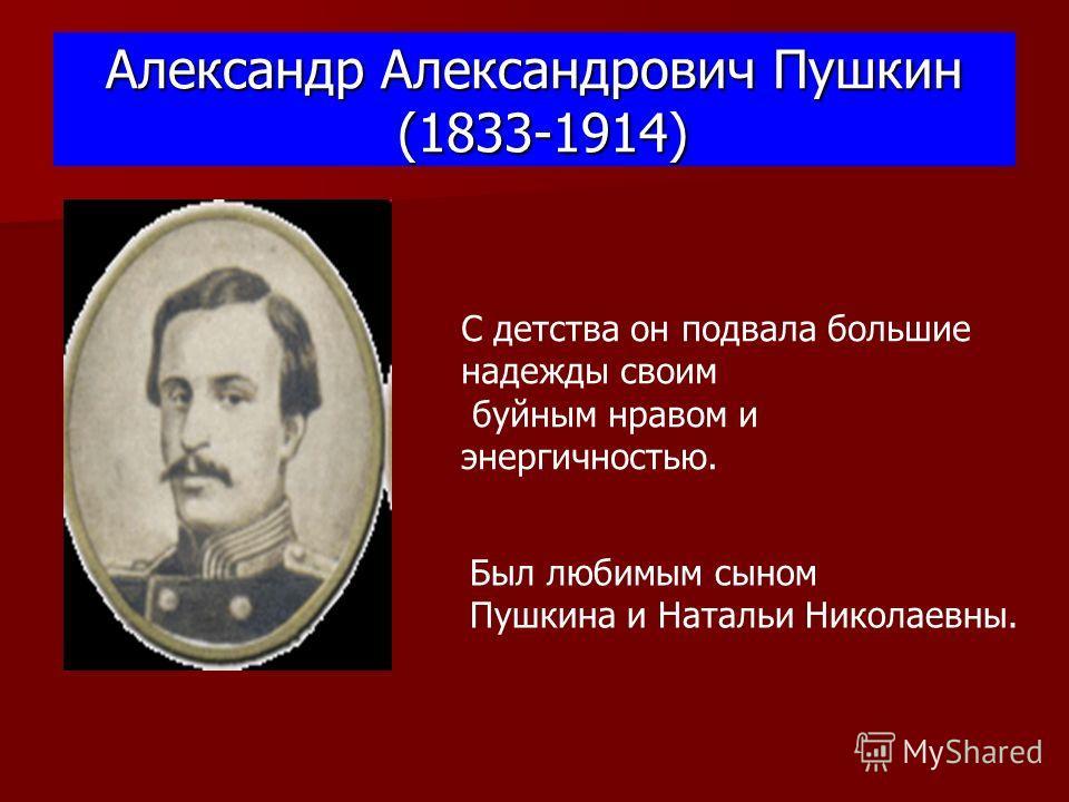 Александр Александрович Пушкин (1833-1914) Был любимым сыном Пушкина и Натальи Николаевны. С детства он подвала большие надежды своим буйным нравом и энергичностью.
