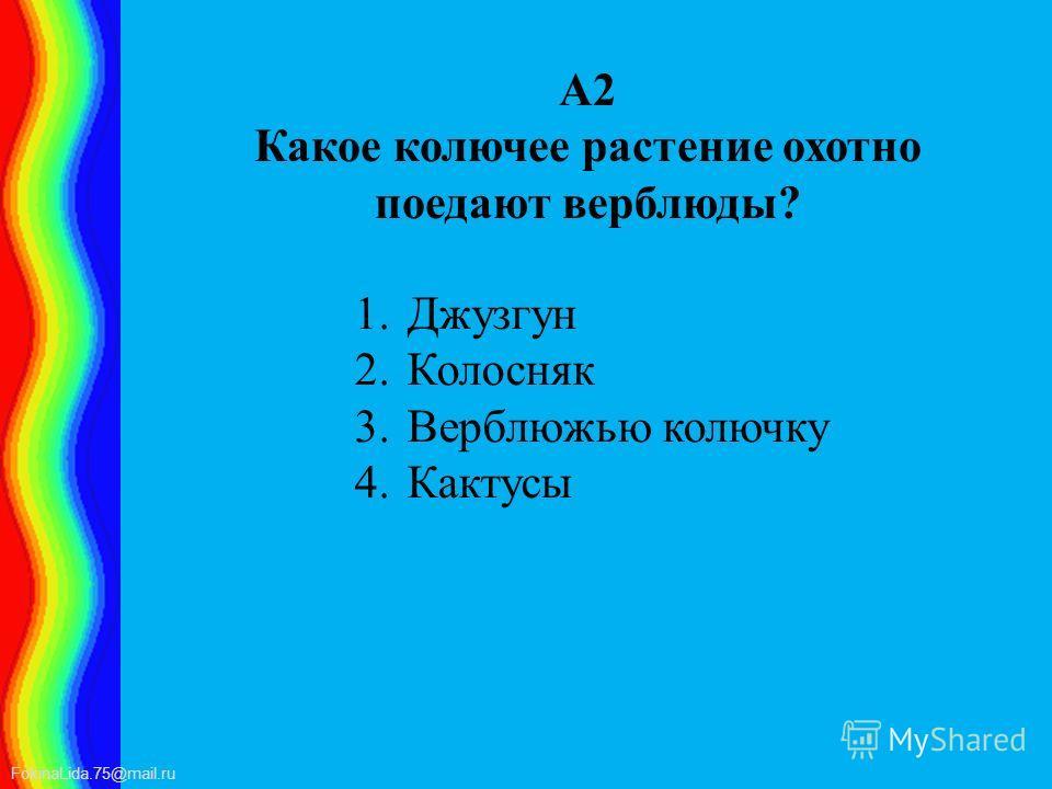 FokinaLida.75@mail.ru А2 Какое колючее растение охотно поедают верблюды? 1. Джузгун 2. Колосняк 3. Верблюжью колючку 4.Кактусы
