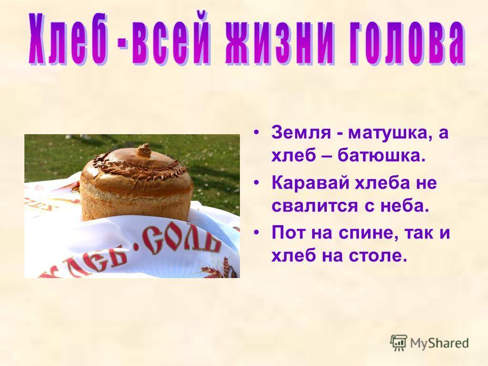 Земля - матушка, а хлеб – батюшка. Каравай хлеба не свалится с неба. Пот на спине, так и хлеб на столе.