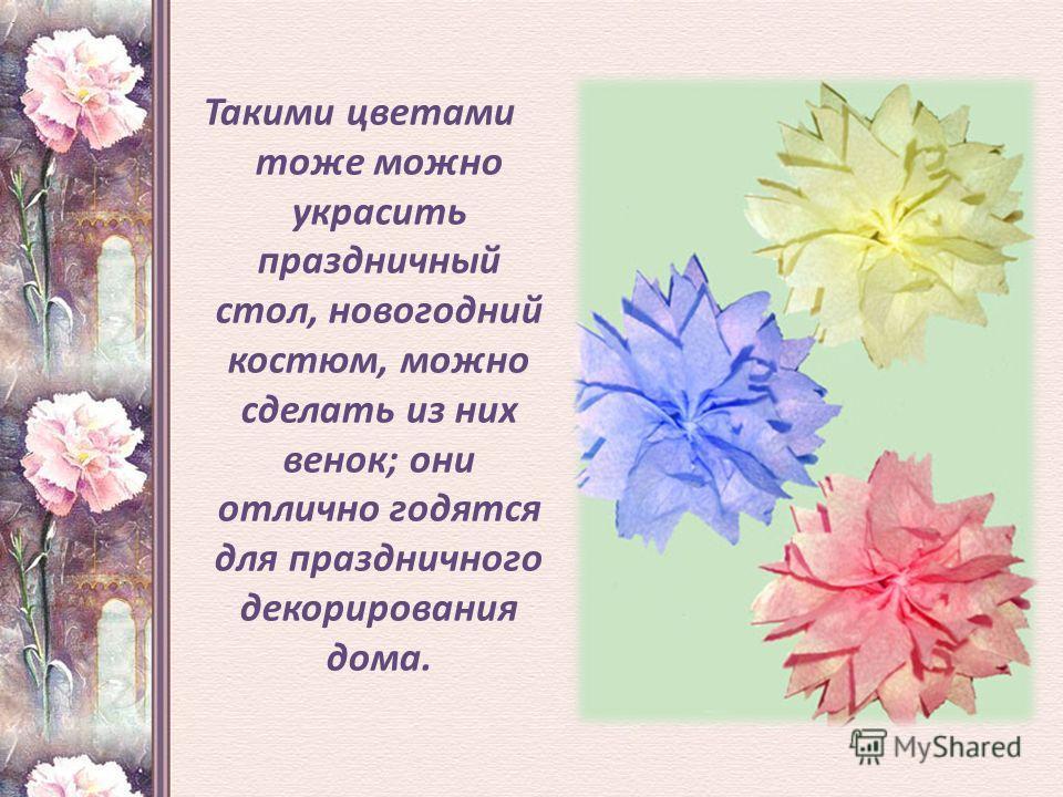 Такими цветами тоже можно украсить праздничный стол, новогодний костюм, можно сделать из них венок; они отлично годятся для праздничного декорирования дома..