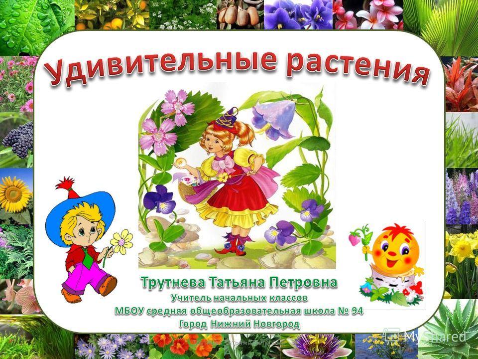 Трутнева Татьяна Петровна