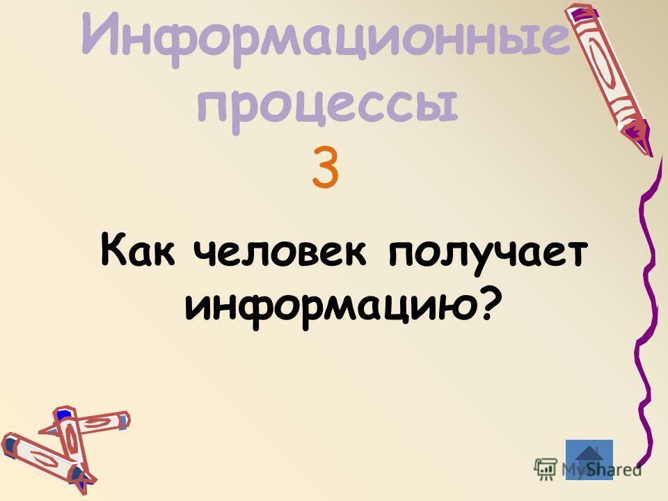 Информационные процессы 3 Как человек получает информацию?