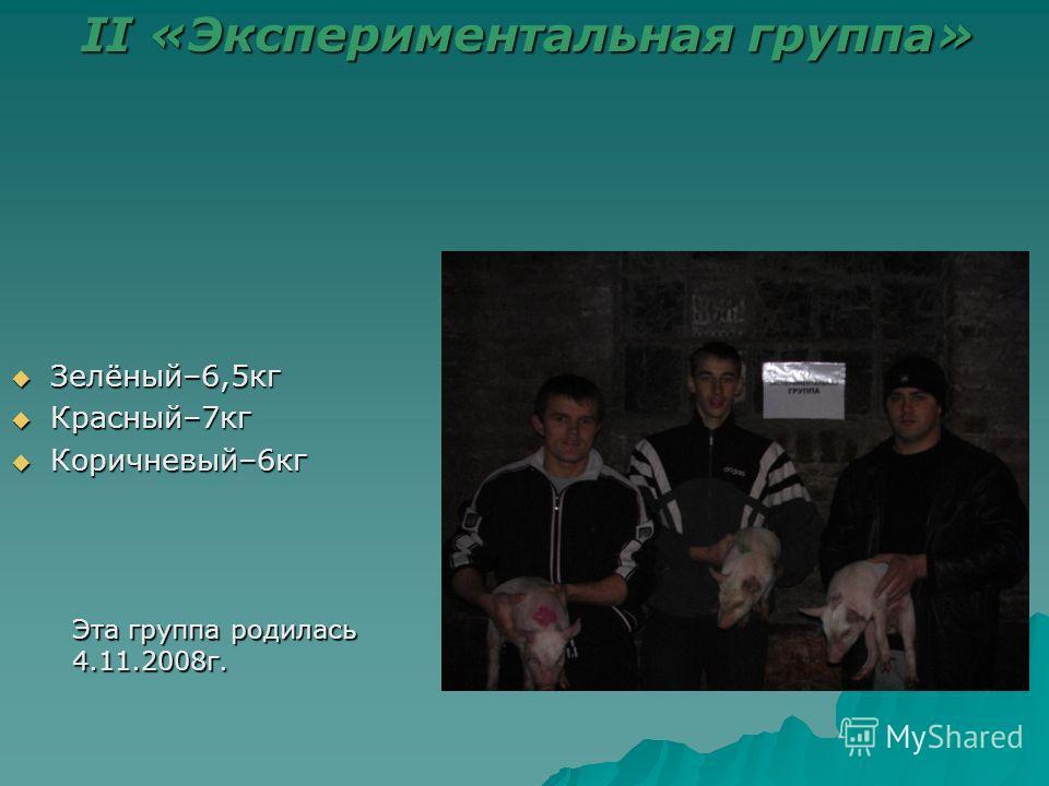 Зелёный–6,5 кг Зелёный–6,5 кг Красный–7 кг Красный–7 кг Коричневый–6 кг Коричневый–6 кг II «Экспериментальная группа» Эта группа родилась 4.11.2008 г.