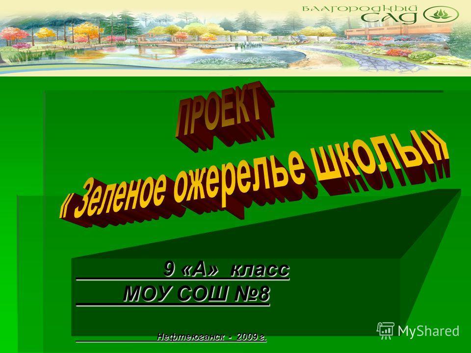 9 «А» класс 9 «А» класс МОУ СОШ 8 МОУ СОШ 8 Нефтеюганск - 2009 г. Нефтеюганск - 2009 г.