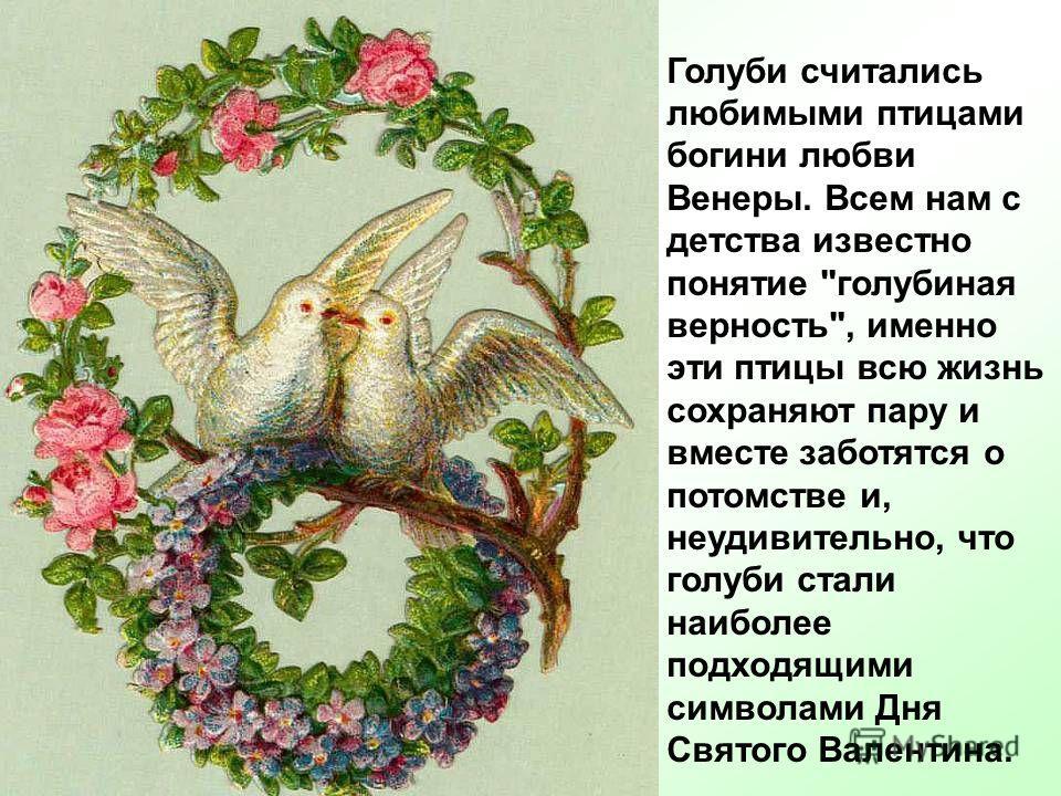 Голуби считались любимыми птицами богини любви Венеры. Всем нам с детства известно понятие