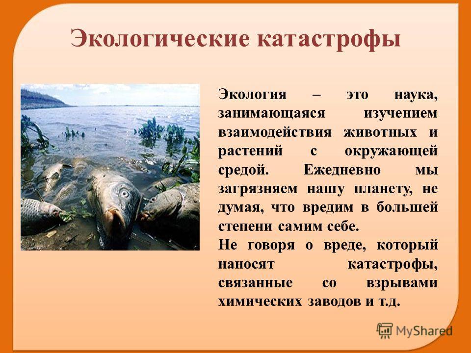 Экология – это наука, занимающаяся изучением взаимодействия животных и растений с окружающей средой. Ежедневно мы загрязняем нашу планету, не думая, что вредим в большей степени самим себе. Не говоря о вреде, который наносят катастрофы, связанные со