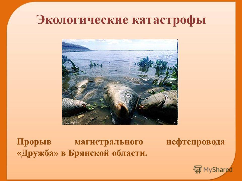 Прорыв магистрального нефтепровода «Дружба» в Брянской области. Экологические катастрофы