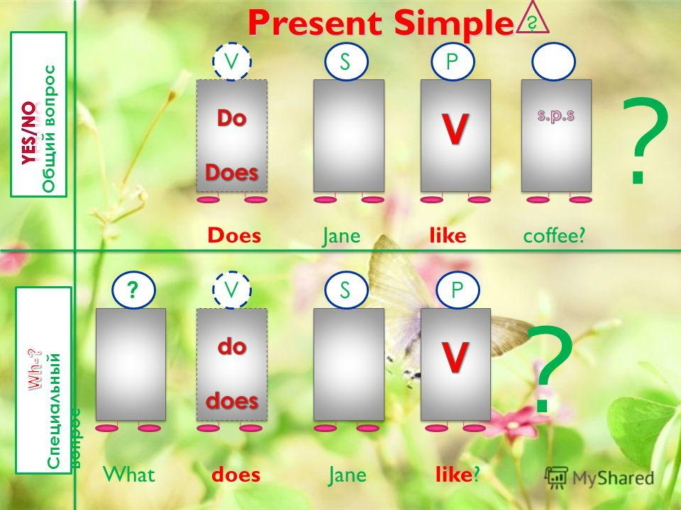 Present Simple ? VSP ? Does ? VSP ? What does Jane like? Jane likecoffee?
