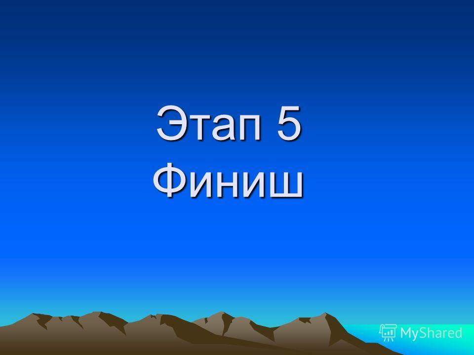 Этап 5 Финиш