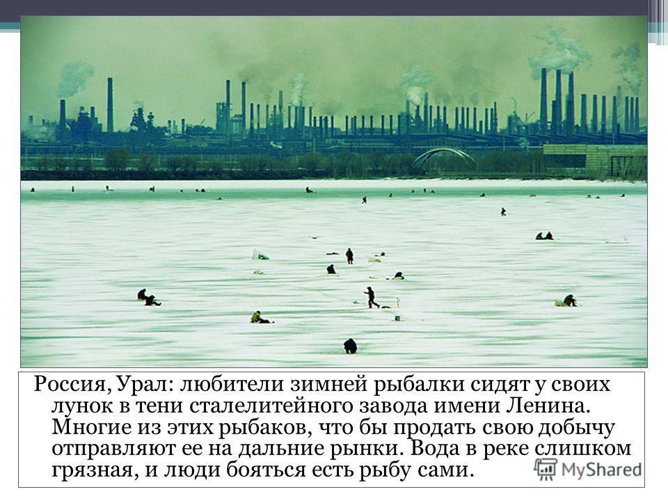 Россия, Урал: любители зимней рыбалки сидят у своих лунок в тени сталелитейного завода имени Ленина. Многие из этих рыбаков, что бы продать свою добычу отправляют ее на дальние рынки. Вода в реке слишком грязная, и люди бояться есть рыбу сами.