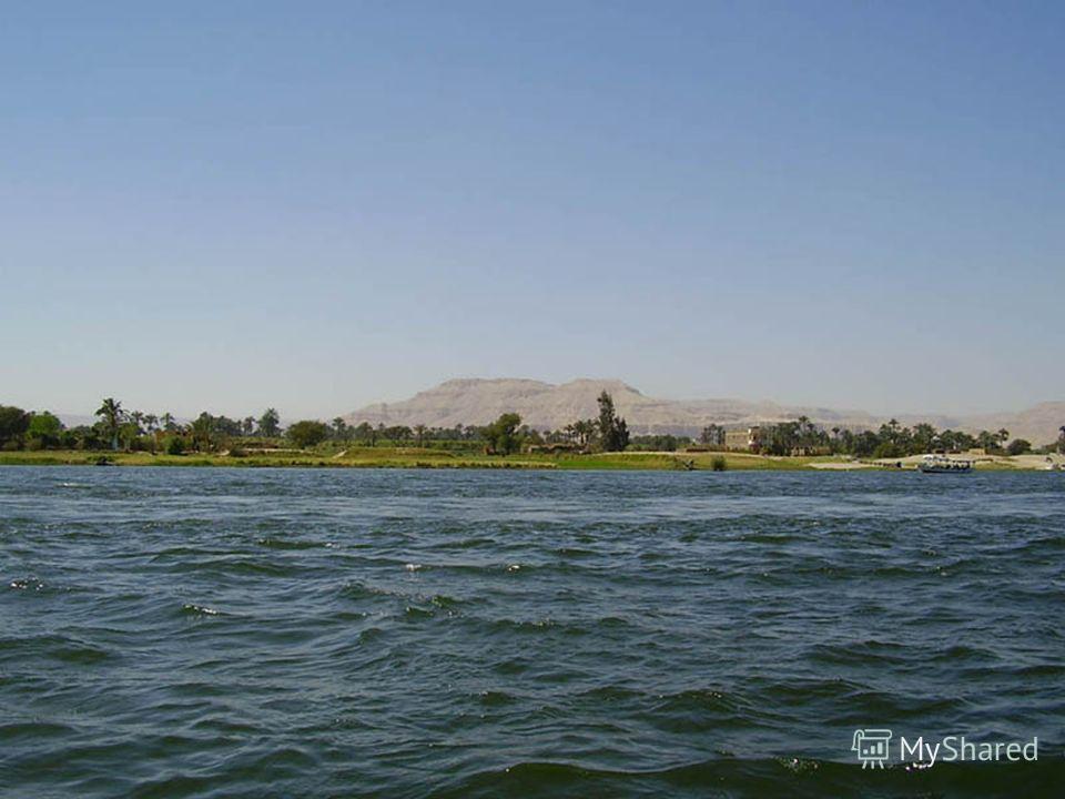 Природа Единственная река Нил, поэтому дельта Нила – одно из самых плодородных мест на Земле Единственная река Нил, поэтому дельта Нила – одно из самых плодородных мест на Земле