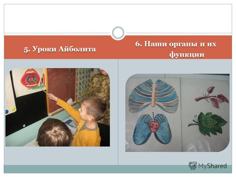 5. Уроки Айболита 6. Наши органы и их функции 6. Наши органы и их функции