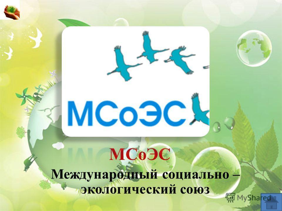 МСоЭС Международный социально – экологический союз